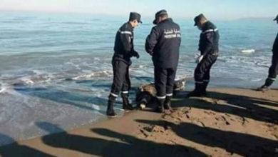 Photo of مواصلة البحث عن الصياد المفقود في عرض البحر بشلف